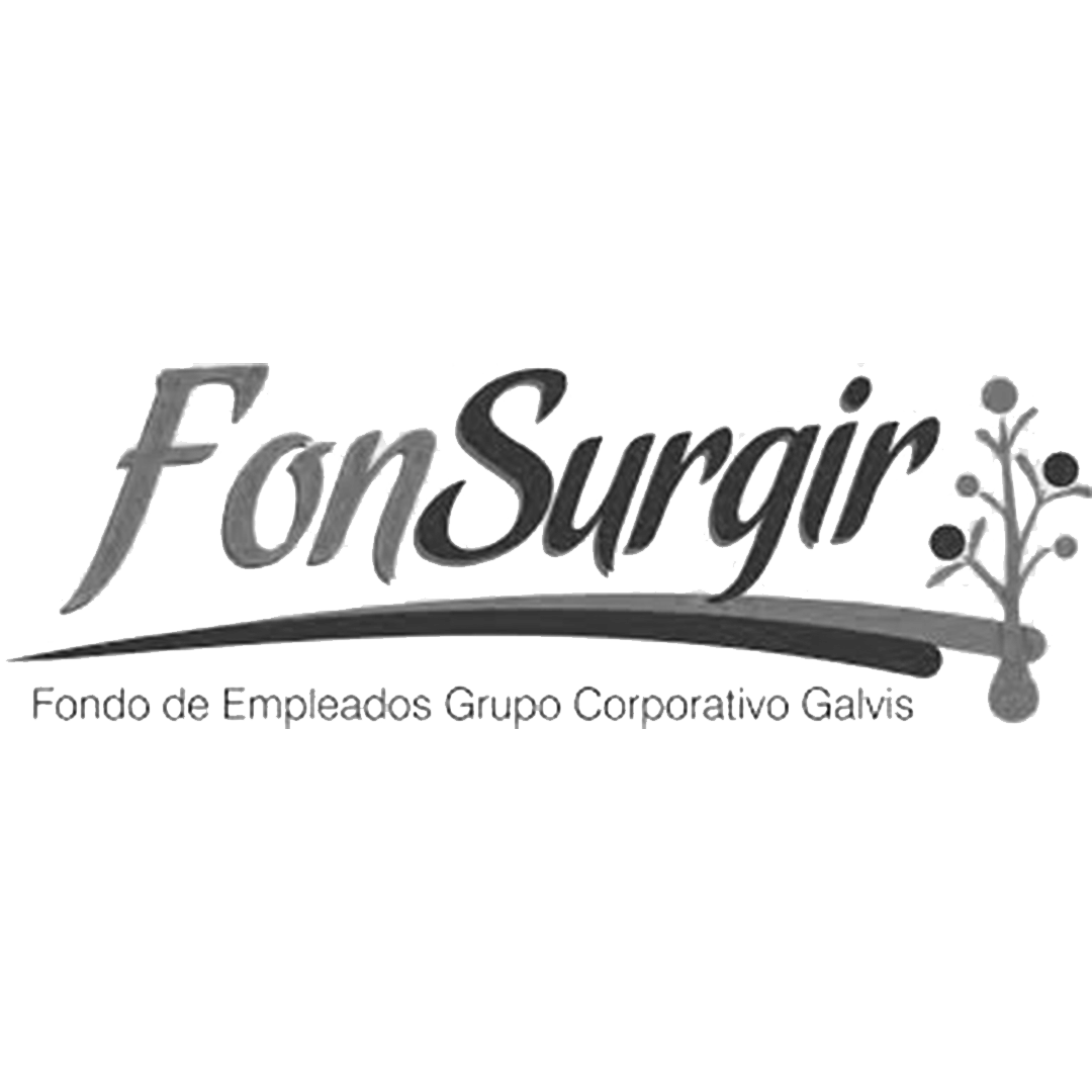 BN FONSURGIR